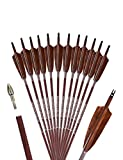 PANDARUS Archery 31-Inch Carbon Hunting Arrows, 4-Inch Turkey Feather Fletching with Replaceable Points, Targeting Practice Arrows Spine 350 for Recurve & Traditional Bows (12 Pack)