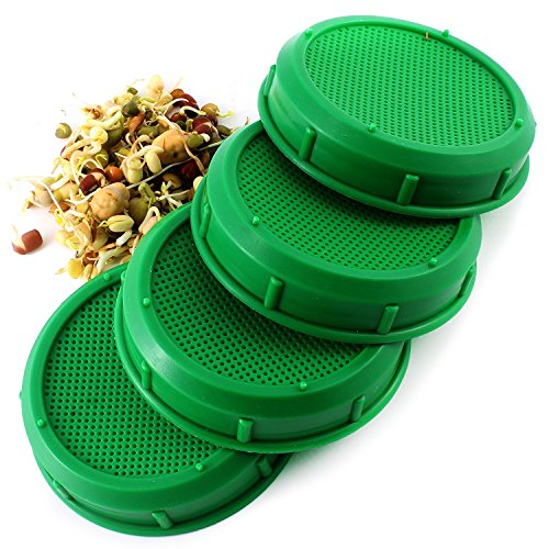 Sprouting Jar Strainer Lid 4 Pack product image