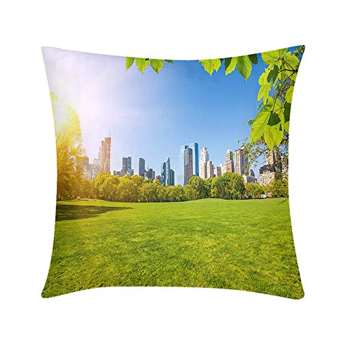 Double Sided Digital Printing Personalized Custom Throw Pillow Central Park New York Design for Sofa Bedroom Office Car Decorate Pillow