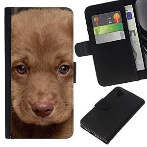 All Phone Most Case / Oferta Especial Cáscara Funda de cuero Monedero Cubierta de proteccion Caso / Wallet Case for LG Nexus 5 D820 D821 // Puppy Muzzle Portrait Light Brown Dog