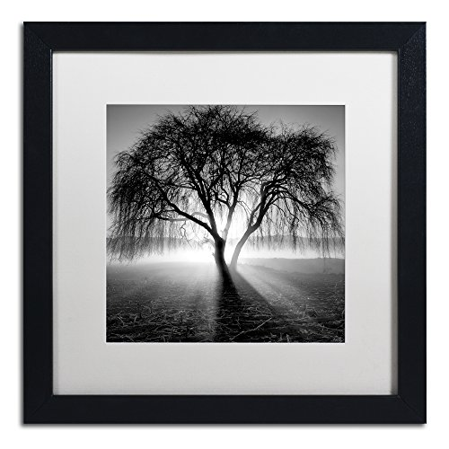 Lightning Tree I by Moises Levy in White Matte and Black Framed Artwork, 16 by 16