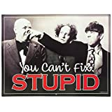 Open Road Brands Three Stooges Can't Fix Stupid Tin Sign, 14