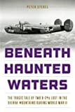 img - for Beneath Haunted Waters: The Tragic Tale of Two B-24s Lost in the Sierra Nevada Mountains during World War II book / textbook / text book