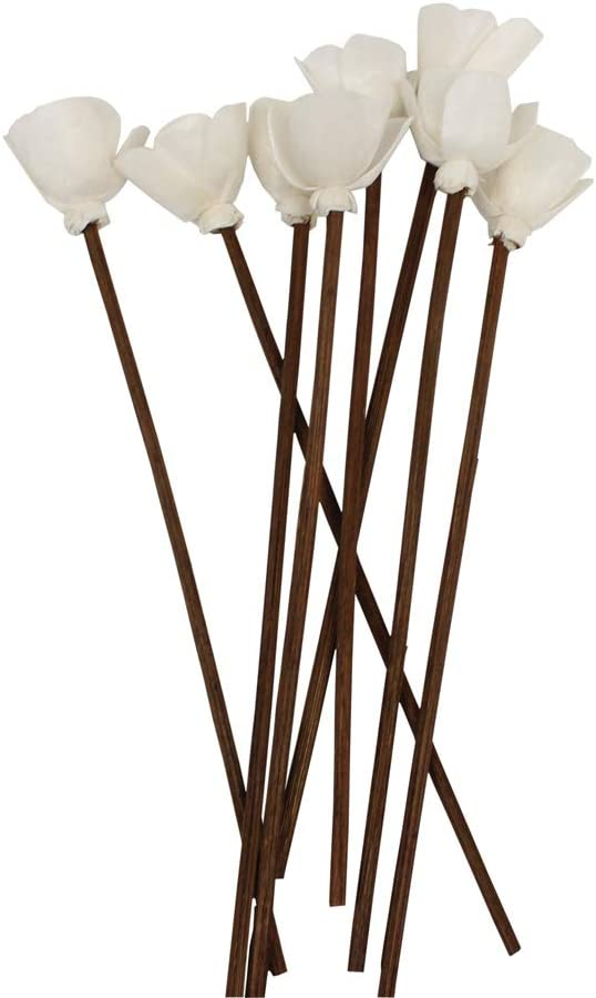 Brown Rattan Reed Fragrance Diffuser and Flower Replacement Refill Sticks