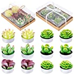 Glarks-12Pcs-a-Pack-Artificial-Succulents-Candles-Handmade-Cactus-Tealight-Candles-for-Birthday-Party-Valentines-Day-Wedding-Spa-Home-Decor-and-DIY-Gift