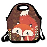 Reusable Picnic Lunch Bags Lunch Tote Cartoon Fox Lunch Box For Men Women Adults Kids Toddler Nurses