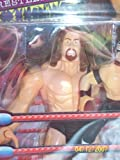 NWO - 1999 - Smash n Slam Wrestlers - Giant w/ Rey Mysterio Jr Bonus Figure - Toy Biz - Very Rare - Limited Edition - Mint - Collectible