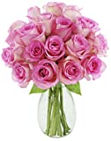 Bouquet of 18 Fresh Cut Pink Roses (Farm-Fresh, Long-Stem) with Free Vase Included