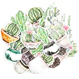 Faded Watercolor Moon Cactus Stickers and Succulent Stickers for Your Laptop, Scrapbook, and Bullet Journal (22 Pieces)