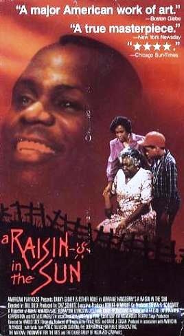 A Raisin in the Sun [VHS TAPE]