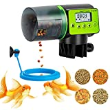 Automatic Fish Feeder, Vacation Fish