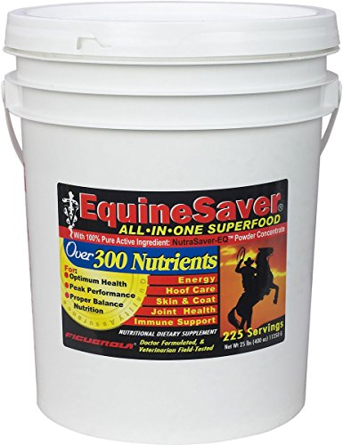 EquineSaver Nutritional Supplement for Horses by Figuerola. Contains NutraSaver-EQ: 300 Key Nutrients to Supply Your Horse's Nutritional and Therapeutic Needs for Optimal Health and Performance. (25) by EquineSaver