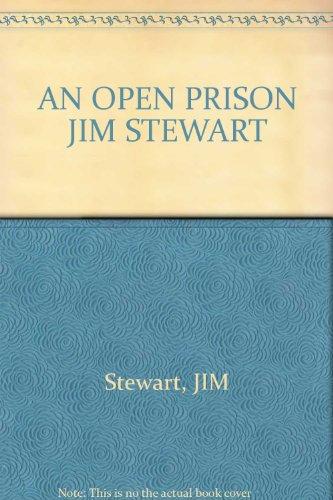 An Open Prison: A Novel