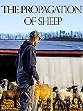 The Propagation of Sheep