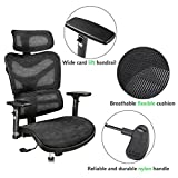 Argomax Mesh ergonomic Office Chair (EM-EC002)