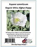 100 Organic White Poppy Seeds Papaver Somniferum. One Stop Poppy Shoppe® Brand.