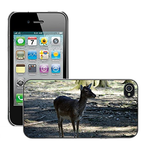 Just Phone Cover Hard plastica indietro Case Custodie Cover pelle protettiva Per // M00138986 Wildlife Park chevreuil sauvage Forêt // Apple iPhone 4 4S 4G