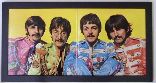 Picture Perfect/FrameMyRecord Record Album Frame for Gatefold Album
