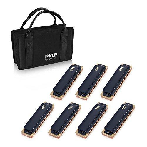 Pyle Professional Brass Metal Covered 10 Hole 7 Piece Diatonic Harmonica Kit - Blues Harp Set Includes Storage Case and Polishing Cloth - Key of C -Great for Pro, Beginner Lessons or Band - PHARM48ST