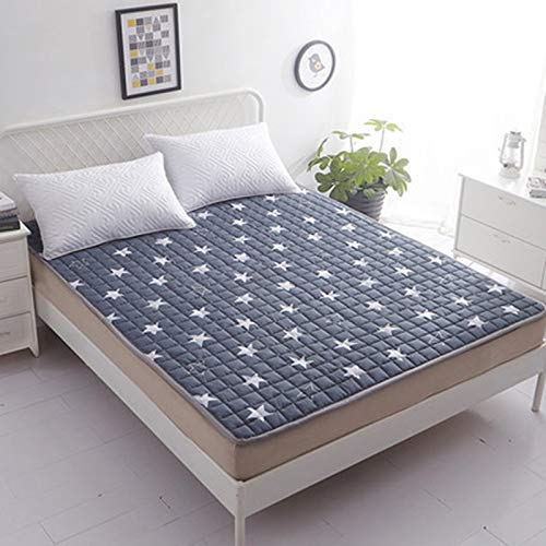 C 90x200cm (35x79inch) Tatami Mattress Mattress Cotton Mattress Student Dormitory Mattress Anti-Slip Predection Pad Breathable Sweat-Absorbent Tatami Mattress Double G (color   E, Size   90x200cm (35x79inch))
