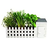 Oliphant Indoor Allotment Gift Set