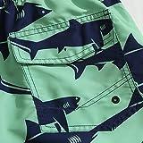 Mens Ultra Quick Dry Predator Fashion Board Shorts