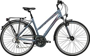 GIANT Argento 3 STA 28 Pulgadas Bicicleta de Trekking Mujer Gris ...