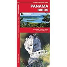 Panama Birds: A Folding Pocket Guide to Familiar Species