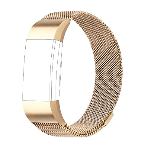 POY Metal Replacement Bands Compatible for Fitbit Charge 2, Milanese Loop Stainless Steel Bracelet Smart Watch Strap with Unique Magnet Lock, Small Gold