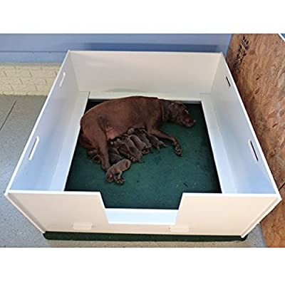 Plaza MagnaBox Whelping Box, X-Small