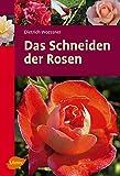 Das Schneiden der Rosen (Ulmer Taschenbücher)