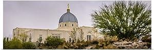 """GREATBIGCANVAS Tucson Arizona Temple, On a Hill, Fine Art Poster Print, Architecture Home Decor Artwork, 48""""x16"""""""
