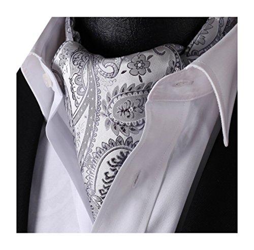 Ascot Tie (SetSense Men's Ascot Floral Paisley Jacquard Woven Cravat Tie Gray / Silver)