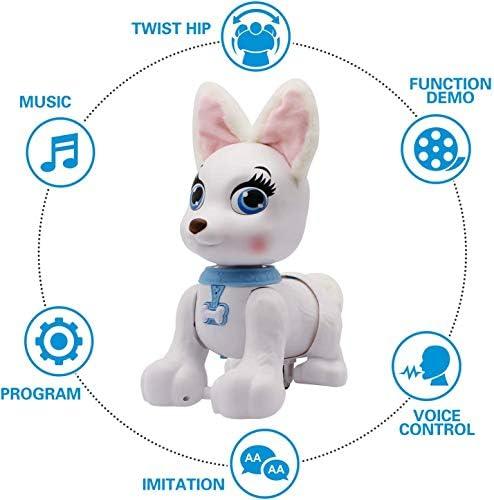 Ferngesteuerter Roboterhund, RC Corgi Welpe Sprachsteuerung Interaktives intelligentes Gehen Tanzen Programmierbarer Roboter Spielzeug Elektronische Haustiere mit Sound für Kinder