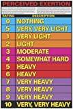 """Perceived Exertion 24"""" X 36"""" Laminated Chart"""