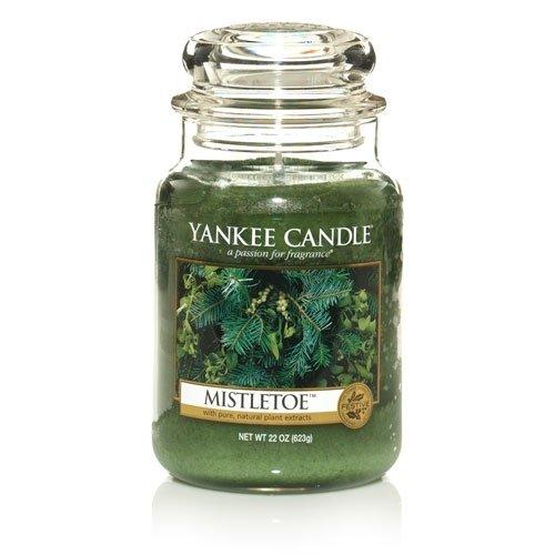 Yankee Candle Co. Mistletoe Jar Candle (L)