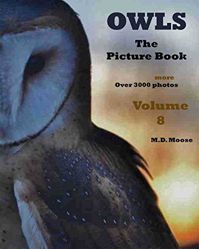 Owls: The Picture Book   Volume 8