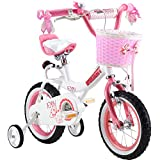 Royalbaby Jenny Princess Pink Girls Bike with Training Wheels and Basket, Perfect Gift for Kids, 12-14-16 inch wheels