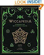 #6: Wiccapedia: A Modern-Day White Witch's Guide (The Modern-Day Witch)