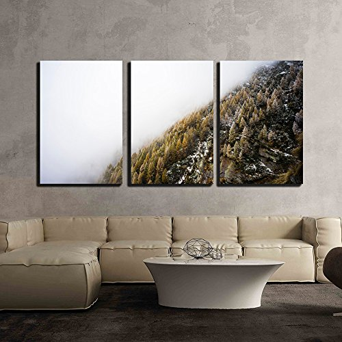 Landscape of Trees and Mountain Surrounded by Fog x3 Panels