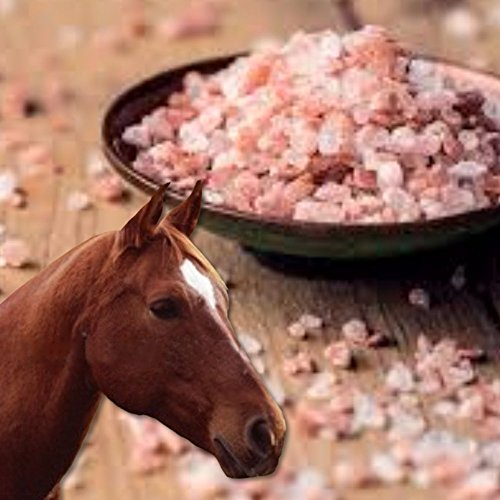 Balance Horses Perfect - Himalayan Salt For Horses - 100% Natural Mikes Instinct Granular Pink Himalayan Rock Salt - Large Size 2.2lb Bag - Rosy Color Purest Form Of Salt Available - Perfect for Horses That Won't Lick A Block
