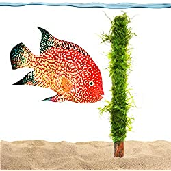 Luffy All Natural Moss - Beautiful Aquatic Decor Safe for Freshwater Fish Tanks - Fun and Playful Aquarium Toy for Betta, Tetra, Gourami & Shrimp to Swim Around & Hide (Moss Bamboo Stick)