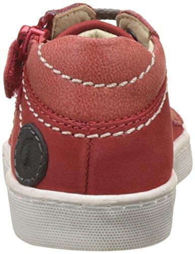 Aster Baby Jungen Sirian Sneaker Rot (Rot)