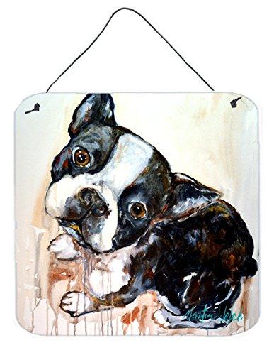 Carolines Treasures Boston Terrier Jake The Look Wall or Door Hanging Prints MW1238DS66 6 x 6 Multicolor