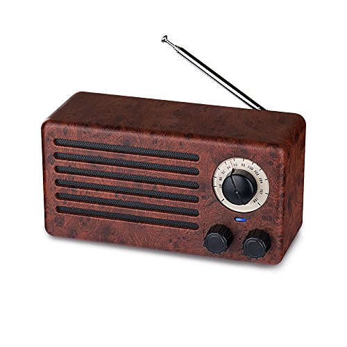 Retro Bluetooth Speakers, AURTEC Dual 10W Natural Wood Wireless Speaker with 10-Hour Playing Time, FM Radio, Built-in Mic, Handsfree Call, AUX Line, USB Flash Drive, TF Card, HD Stereo Sound and Bass