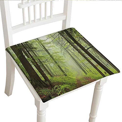 Outdoor Chair Alder (Squared Corners Seat Cushion (Set of 2) (20
