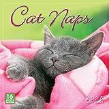 Sellers Publishing 2018 Cat Naps Wall Calendar (CA0114)