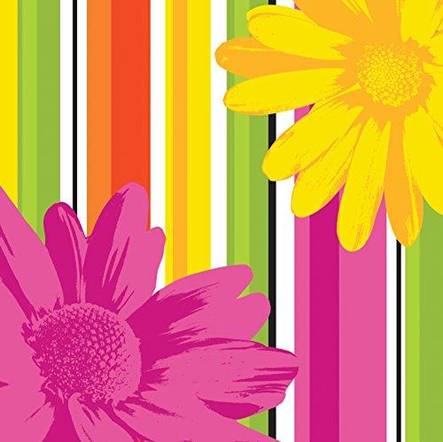 Creative Converting 18 Count Beverage Napkins, Floral Stripes