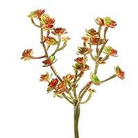 "Shinoda Design Center 0031301140 2 Piece Faux Succulent Stem Set, 9"", Green/Burgundy"