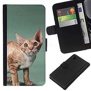 All Phone Most Case / Oferta Especial Cáscara Funda de cuero Monedero Cubierta de proteccion Caso / Wallet Case for Sony Xperia Z1 L39 // Javanese Devon Rex Big Ears Cat